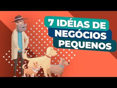 7 Ideias de Negócios (PEQUENOS) para Aumentar a sua RENDA